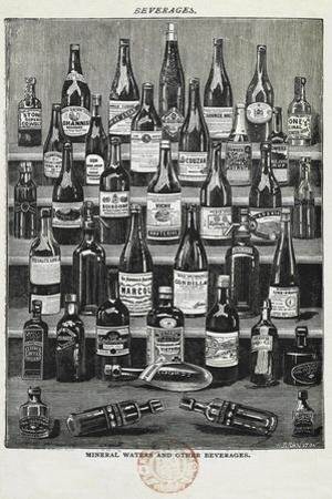 Beverages, Assorted Wines and Spirits by Isabella Beeton