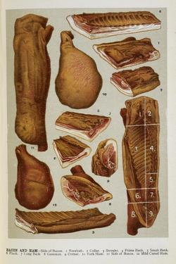 Various Cuts Of Bacon and Ham by Isabella Beeton