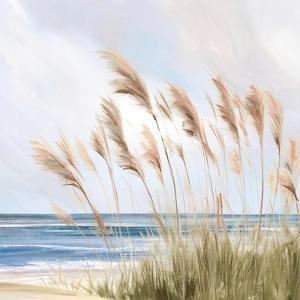 Beach Pampas by Isabelle Z