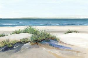 Beach Sand Dune II by Isabelle Z
