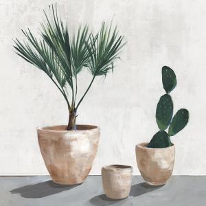 Tropical Vases by Isabelle Z