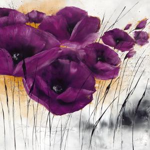 Pavot violet IV by Isabelle Zacher-finet