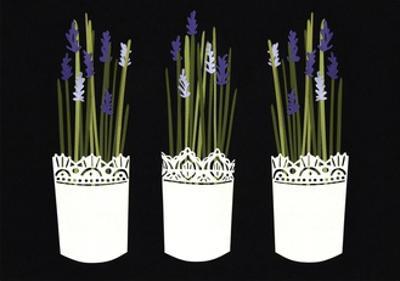 Lavender pots, 2014 by Isobel Barber