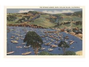 Isthmus Harbor, Catalina, California