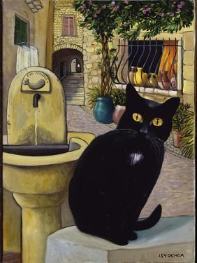European Cat at St. Paul de Vence, France by Isy Ochoa
