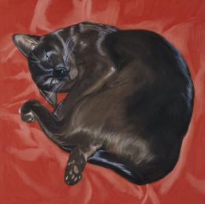 Velvet Cat I (Chat Velours I) by Isy Ochoa