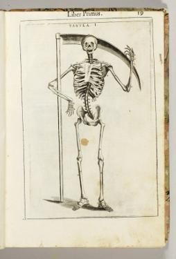 A Skeleton Holding a Scythe in the Style of a Grim Reaper by Italian School
