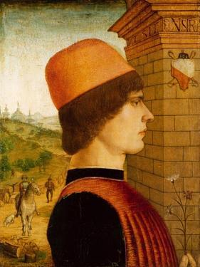 Portrait of a Man, possibly Matteo di Sebastiano di Bernardino Gozzadini, c.1494 by Italian School