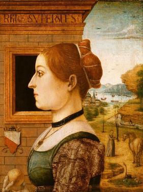 Portrait of a Woman, possibly Ginevra d'Antonio Lupari Gozzadini, c.1494 by Italian School
