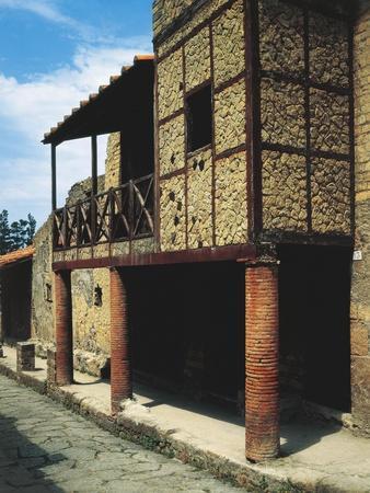https://imgc.allpostersimages.com/img/posters/italy-campania-herculaneum-view-of-trellis-house-bc_u-L-POPUT40.jpg?p=0
