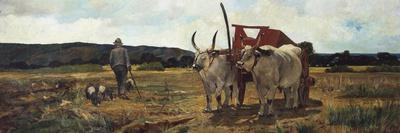 https://imgc.allpostersimages.com/img/posters/italy-florence-maremma-toscana-circa-1894_u-L-PRLNDI0.jpg?p=0