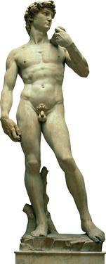 Italy Statue Of David Lifesize Standup