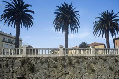 https://imgc.allpostersimages.com/img/posters/italy-tuscany-maremma-orbetello-etruscan-wall-with-palm-trees_u-L-PRLGUJ0.jpg?p=0