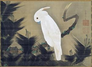 White Cockatoo on a Pine Branch by Ito Jakuchu
