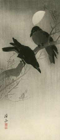 Two Ravens, c.1920 by Ito Sozan