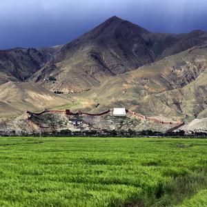Gyantse Dzong, Gyantse County, Shigatse Prefecture, Tibet, China by Ivan Vdovin