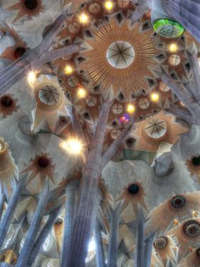 Interior of Basilica Sagrada Familia, Barcelona, Catalonia, Spain by Ivan Vdovin