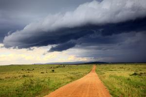 Landscape, Maasai Mara National Reserve, Kenya by Ivan Vdovin