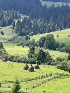 Landscape of Carpathians, Zakarpattia Oblast, Transcarpathia, Ukraine by Ivan Vdovin