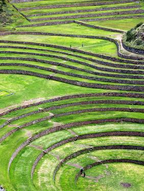 Moray, Archaeological Site, Cuzco, Peru by Ivan Vdovin