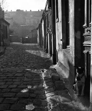 255 Avenue d'Alesia, c.1946 by Izis