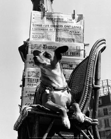 Boulevard Poissonniere 1949 by Izis