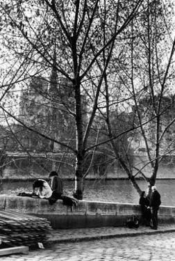 Quai d'Orlean Face a Notre Dame, c.1970 by Izis