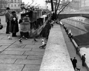 Quai de Montebello 1956 by Izis