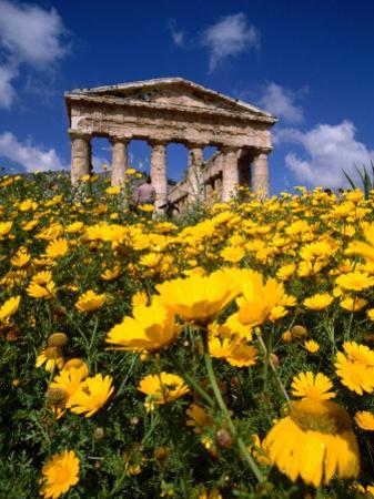 Greek Temple in Spring, Agrigento, Sicily, Italy by Izzet Keribar