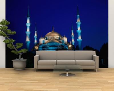 The Blue Mosque of Sultan Ahmed I and Hagia Sophia or Ayasofya, Istanbul, Istanbul, Turkey