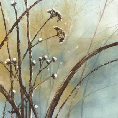 Fall Meadow III