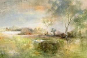 Reflection of June by J Austin Jennings
