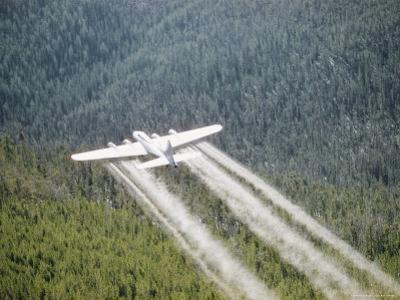A Forest Service Plane Drops Fire Retardant on the Forest Below