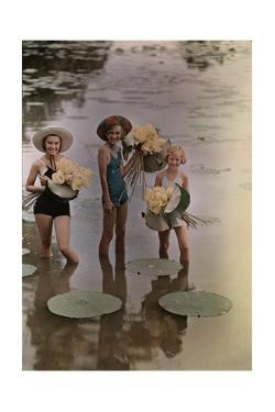 Amana Girls Standing in Water Holding Bunches of American Lotus by J. Baylor Roberts
