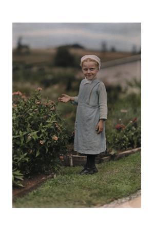 An Amish Girl Stands in a Garden