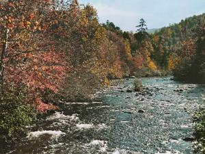 An Autumn Scene Along Little River in Tennessee by J. Baylor Roberts