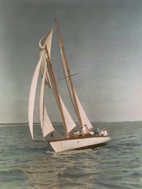 Sailboats Along the Gulf Coast by J. Baylor Roberts