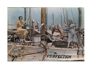 Two Women Display the Seven Types of Fish They Caught by J. Baylor Roberts