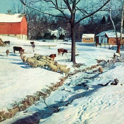 """Snowy Barnyard,""February 1, 1948"
