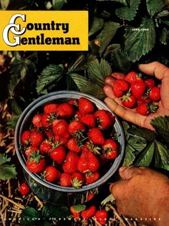 """Strawberries,"" Country Gentleman Cover, June 1, 1948"