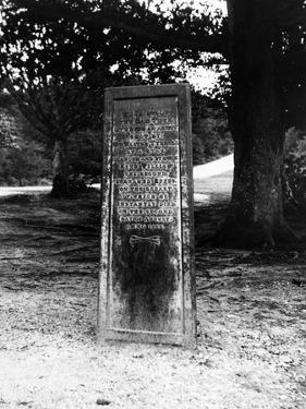 The Rufus Stone by J. Chettlburgh