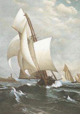 Winning Yacht by J. D. Davidson