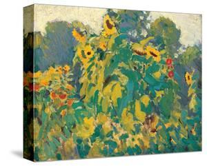 Sunflowers, Thornhill by J. E. H. MacDonald