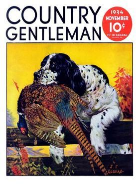 """Retriever with Pheasant,"" Country Gentleman Cover, November 1, 1934 by J.F. Kernan"