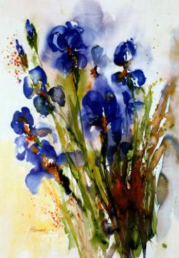 Iris by J. Hammerle