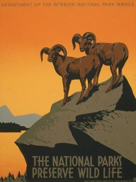 National Parks by J. Hirt