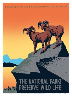 The National Parks Preserve Wild Life - Bighorn Sheep by J^ Hirt