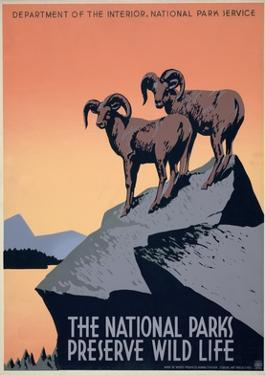 The National Parks Preserve Wild Life, ca. 1936-1939 by J. Hirt