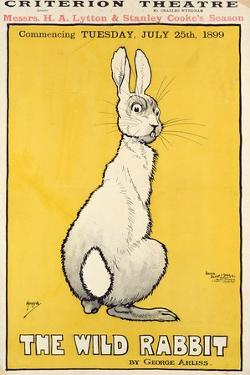 The Wild Rabbit Poster, 1899 by J. Hissin