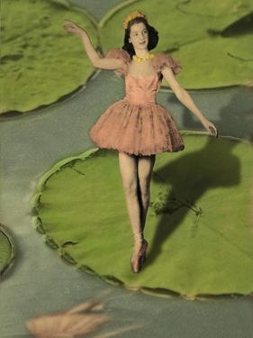 Ballerina by J Hovenstine Studios